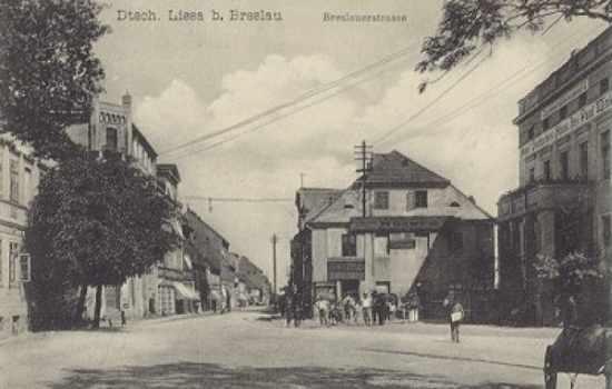 dyhernfurther_2